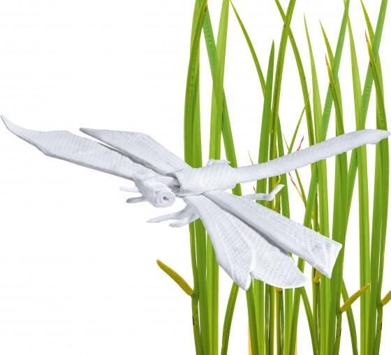 Stoffhandtuchlibelle im Gras