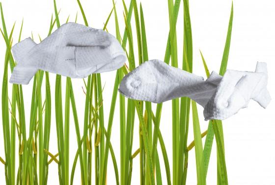 Stoffhandtuchfisch mit Seegras
