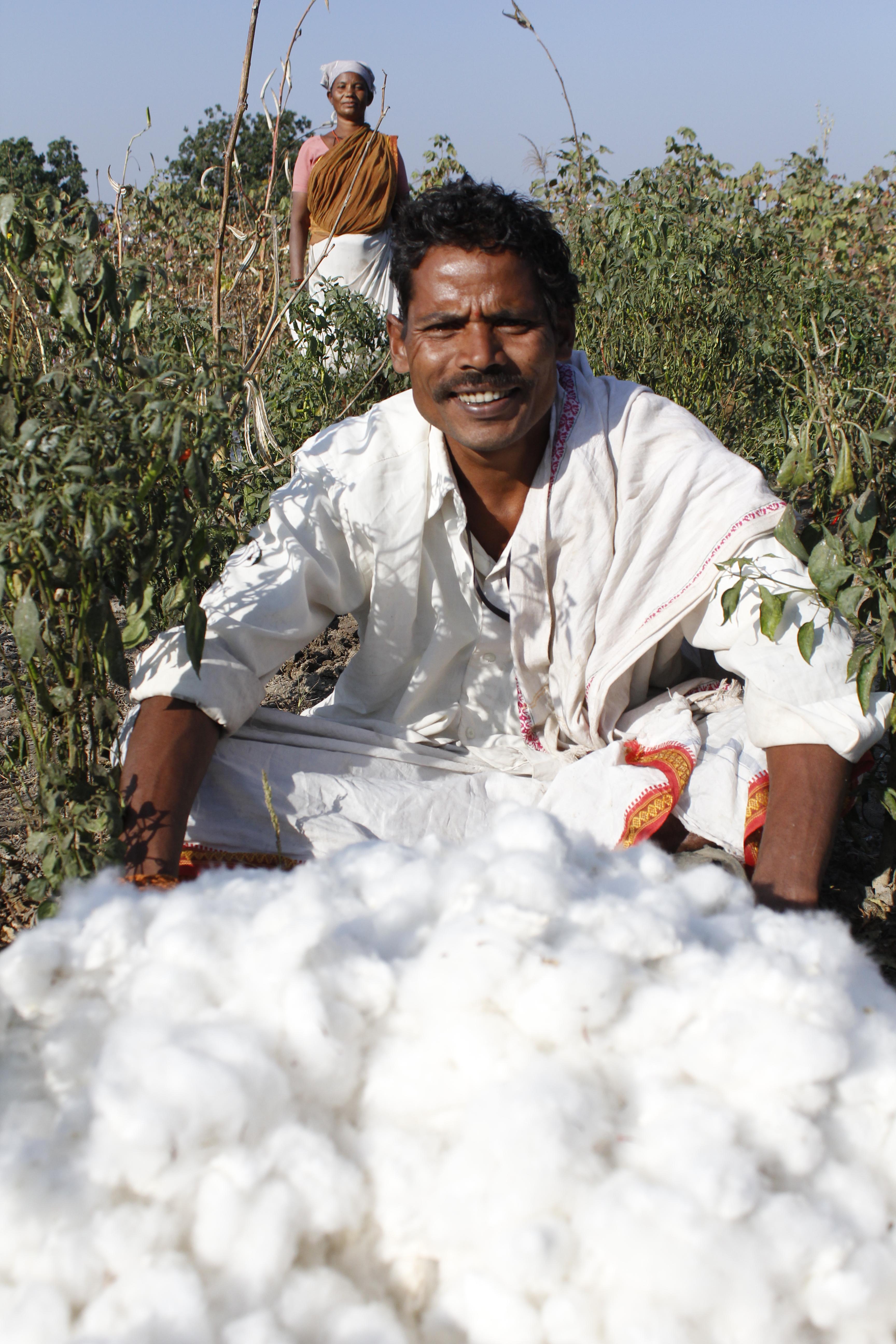 Cotton fairtrade