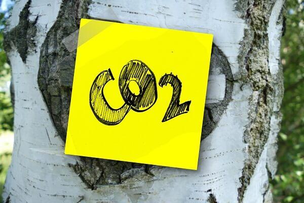 CO2 opname