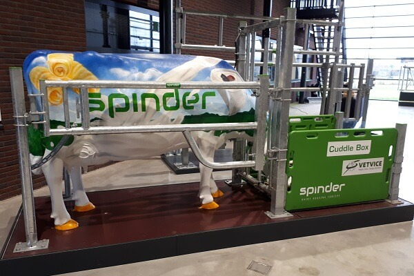 Spinder stalinrichting