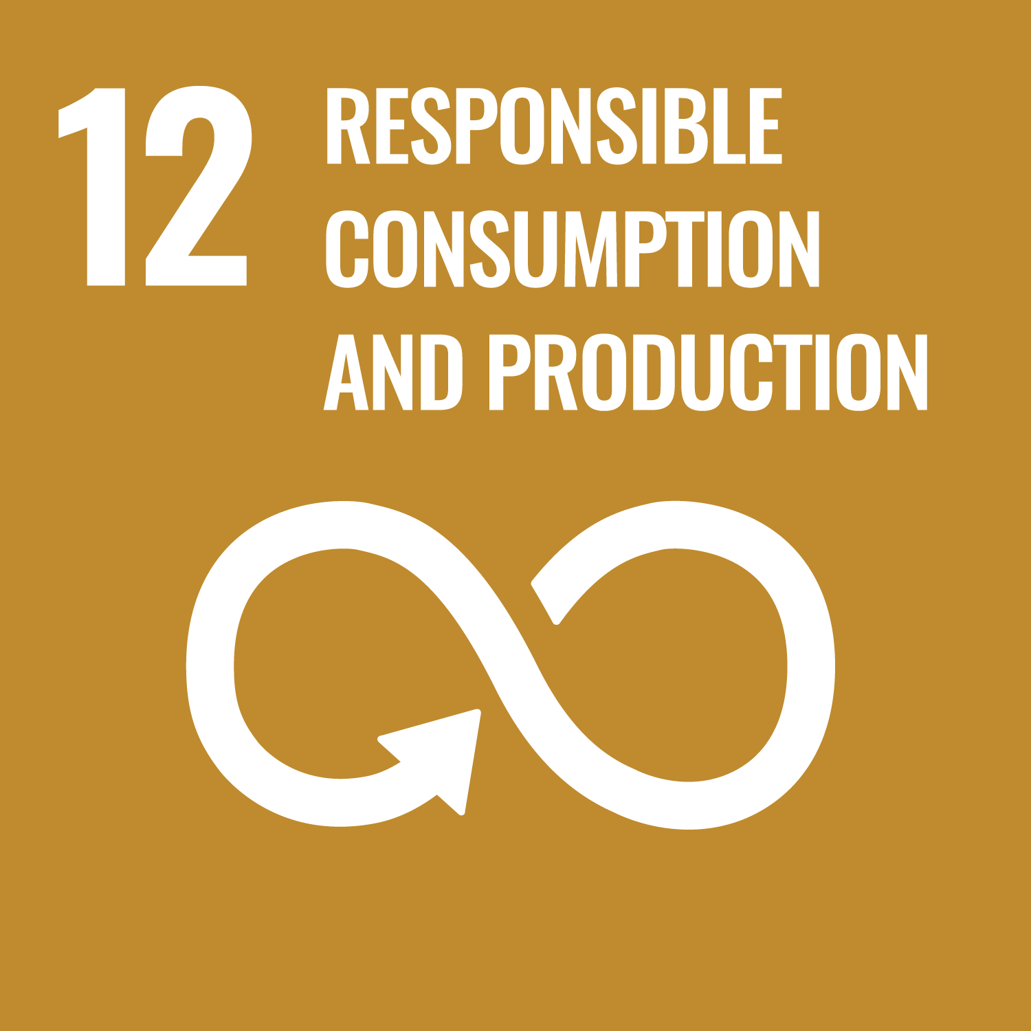 Sustainability Responsible Consumption and Production