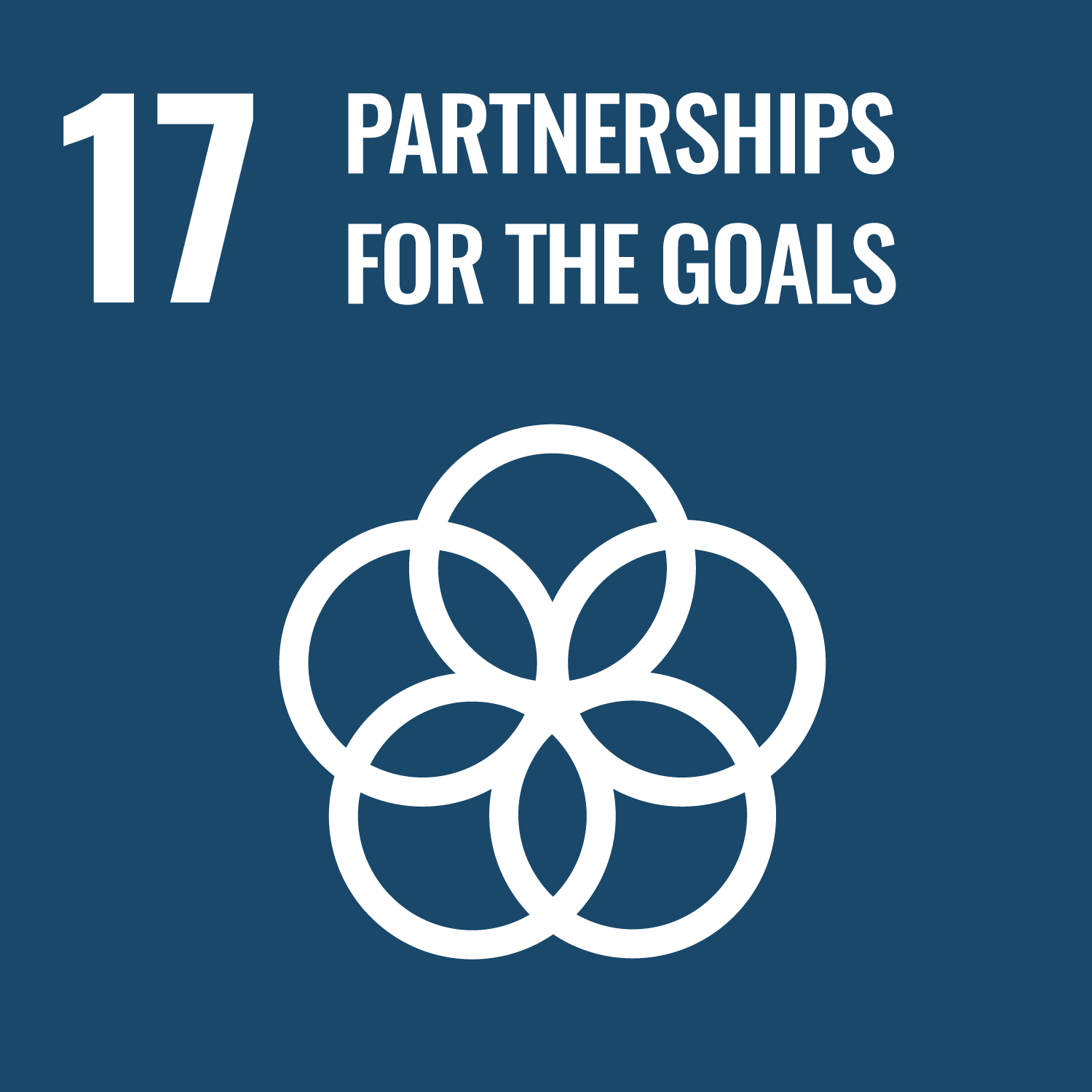 Sustainability Partnerships for the Goals