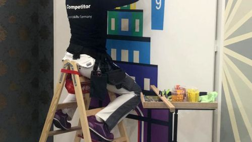 CWS WorldSkills 2019 skill painter